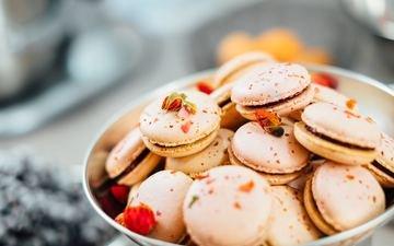 cookies, macaroon
