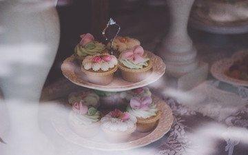 wedding, dessert, glaze, tray, cupcakes