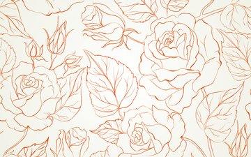 цветы, бутоны, текстура, фон, роза, 700, seamless