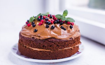 ягоды, черника, украшение, земляника, торт, десерт, 5, шоколадный, крем