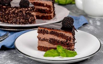 chocolate, cake, dessert, 2, blackberry, cream
