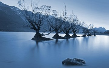 trees, water, lake, mountains, nature, landscape