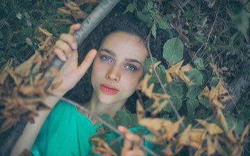 листья, девушка, ветки, взгляд, ситуация, волосы, лицо, antonia