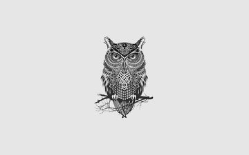 art, owl, minimalism, bird