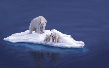 арт, вода, животные, океан, льдины, медведи, белые медведи, медвежата