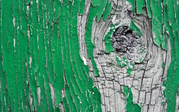 tree, texture, green, paint
