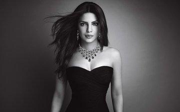 девушка, взгляд, чёрно-белое, модель, волосы, лицо, актриса, декольте, знаменитость, индийская, приянка чопра