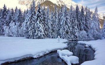 trees, river, mountains, snow, nature, winter