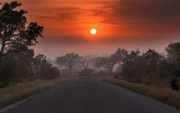 дорога, облака, деревья, солнце, закат, пейзаж, туман, сумерки