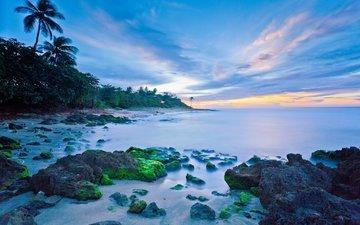 скалы, камни, берег, закат, пейзаж, море, горизонт, пальмы, пуэрто-рико, агуадилья бич