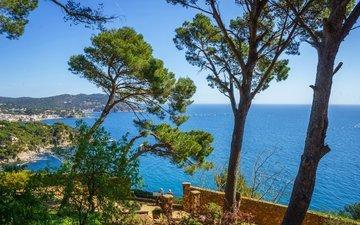 деревья, природа, море, горизонт, побережье, испания, коста-брава