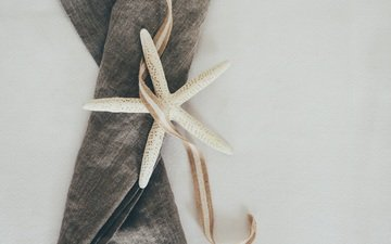 fabric, ribbon, starfish, cloth