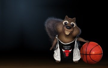 black background, the ball, basketball, squirrel, chicago bulls