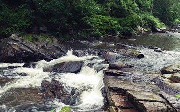 river, rocks, stones, foliage