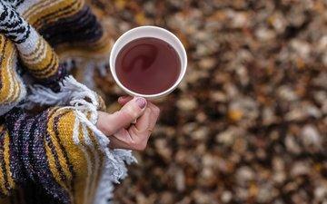 напиток, осень, руки, чашка, чай