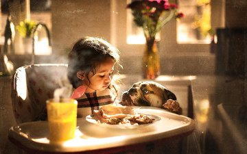 food, dog, girl, room, child, animal, bulldog, table, sujata setia