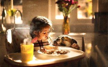 еда, собака, девочка, комната, ребенок, животное, пес, бульдог, столик, sujata setia