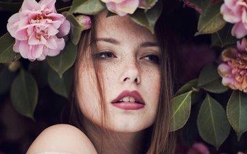 девушка, портрет, взгляд, модель, губы, розовые цветы, веснушки, карие глаза, skye томпсон, ruby james
