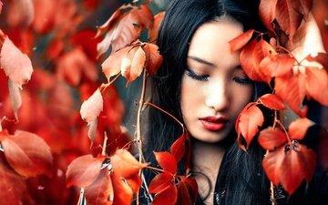 leaves, girl, portrait, brunette, branches, autumn, face, makeup, asian, closed eyes, alessandro di cicco