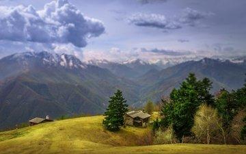 небо, облака, деревья, горы, домики, швейцария
