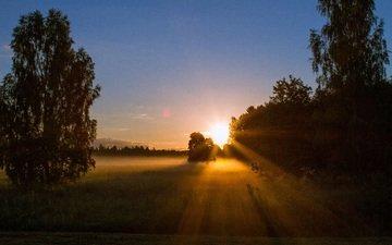 небо, деревья, солнце, закат, лучи, пейзаж, солнечный свет