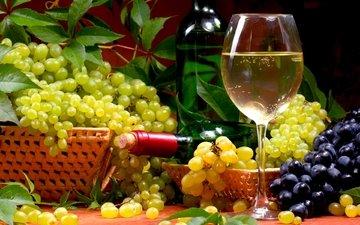виноград, вино, бутылка, бокалы, алкоголь, натюрморт