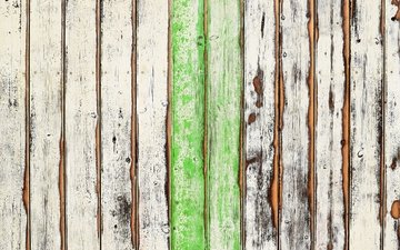 tree, texture, the fence, board, fence