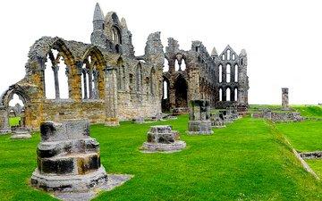 трава, руины, англия, северный йоркшир, аббатство, аббатство уитби