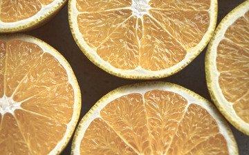 фрукты, апельсины, срез, цитрусы