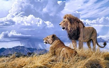 небо, арт, облака, природа, львы, лев, львица
