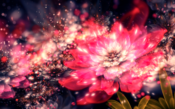 flowers, abstraction, flower, petals, color, form, fractal