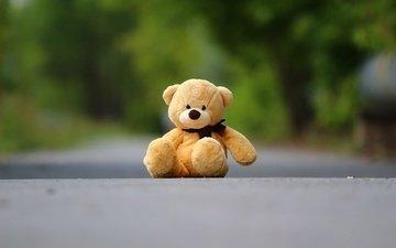 фон, медведь, мишка, игрушка, асфальт, плюшевый мишка