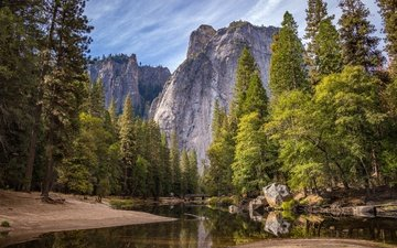 trees, river, mountains, nature, forest, national park, yosemite