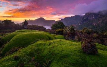 clouds, trees, mountains, hills, nature, sunset, landscape, australia, tasmania