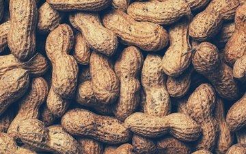 орехи, орех, скорлупа, арахис, земляной орех