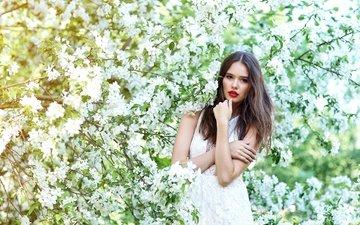 цветение, девушка, платье, поза, ветки, взгляд, сад, весна, волосы, лицо, макияж