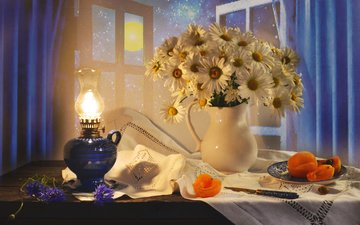 flowers, night, fruit, the moon, lamp, chamomile, window, knife, napkin, pitcher, plate, curtains, table, still life, apricots, valentina fencing