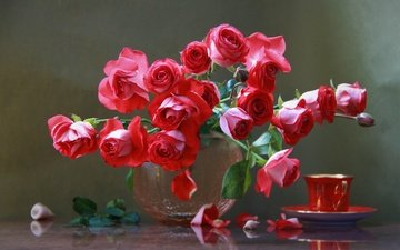 цветы, розы, лепестки, ракушки, букет, чашка, ваза, натюрморт