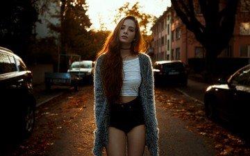 trees, leaves, sunset, girl, look, street, hair, face, machine, t-shirt, long hair