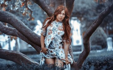 tree, girl, look, model, legs, hair, face, rafa sanchez, livay