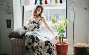 девушка, платье, цветок, взгляд, модель, волосы, лицо, окно, азиатка, подушка