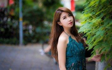 девушка, взгляд, волосы, лицо, азиатка, вгляд