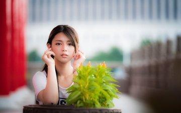 plants, girl, look, hair, face, asian, bokeh