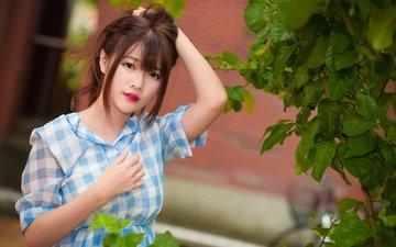leaves, girl, look, hair, face, asian, shirt