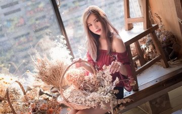 girl, look, hair, face, window, asian, bouquets