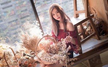 девушка, взгляд, волосы, лицо, окно, азиатка, букеты