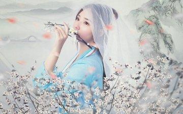 цветение, девушка, фон, ветки, взгляд, модель, волосы, лицо, азиатка