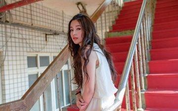 ladder, steps, girl, background, look, model, face, asian, long hair
