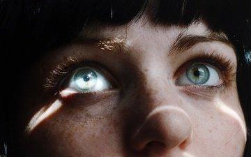 глаза, свет, девушка, взгляд, модель, волосы, лицо, нос, ресницы, веснушки, брови