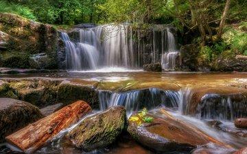 stones, forest, waterfall, wales, llansantffraed